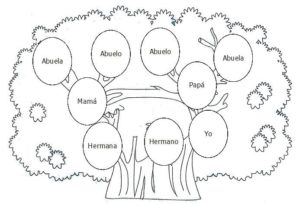guía para hacer árbol genealógico