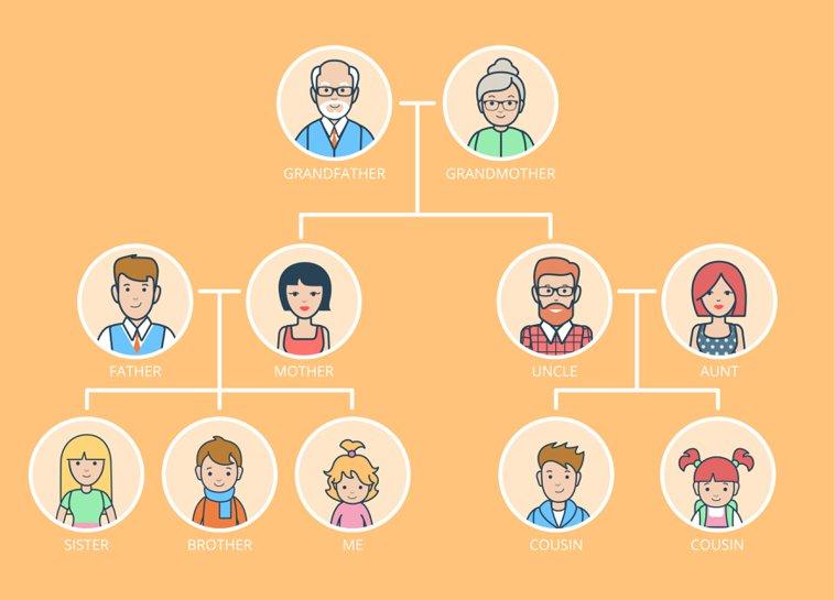 árbol genealógico en inglés de la familia
