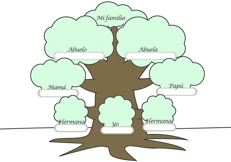 rellenar árbol genealógico