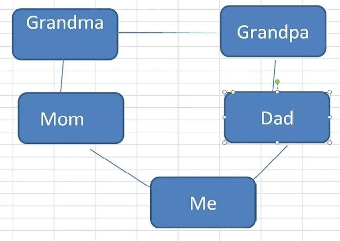 método 3 paso 7 árbol genealógico plantilla excel